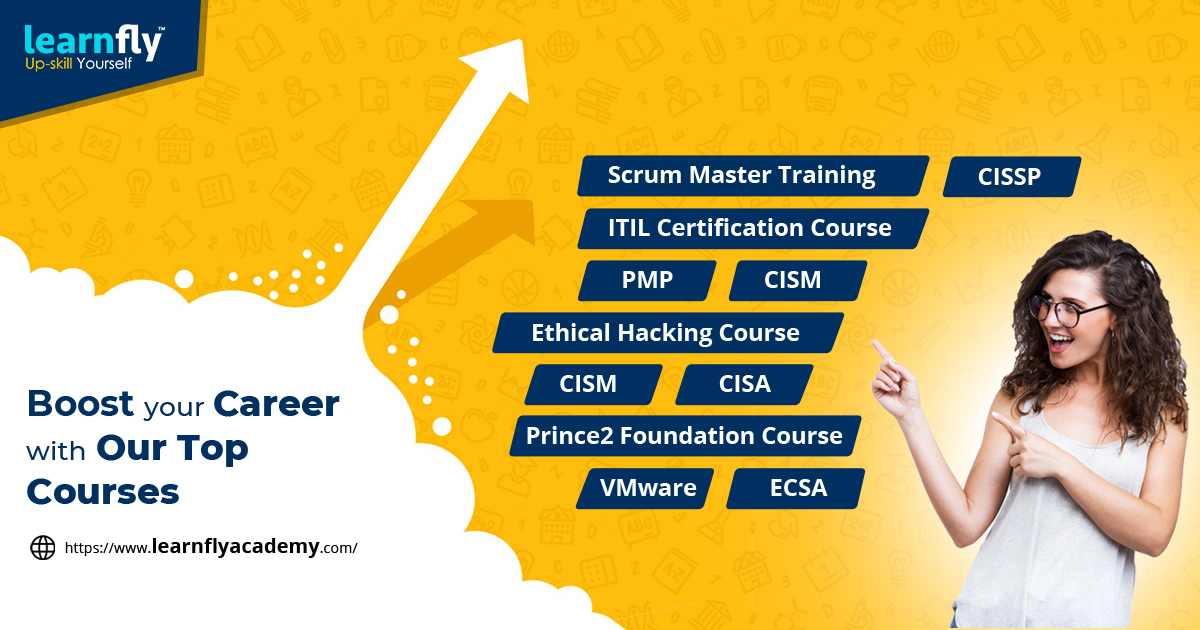 Top Institute of IT Professional and Management Course Training